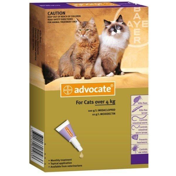 """Стоит ли приобретать средство """"Адвокат"""" для кошек?"""