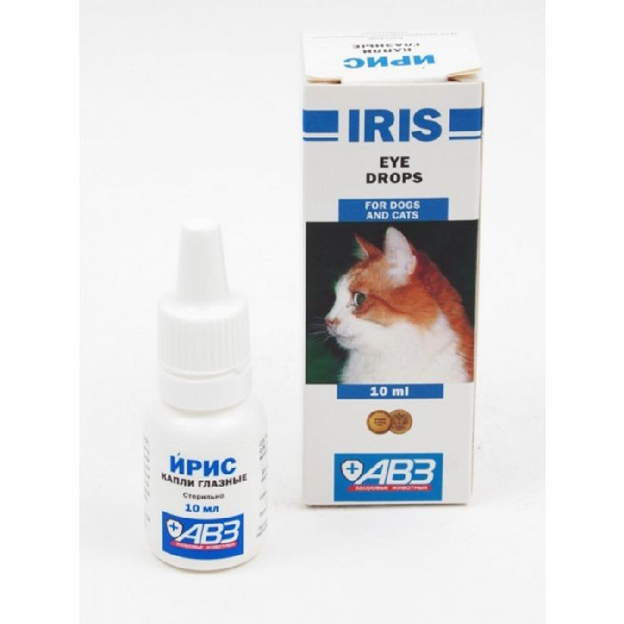 Конъюнктивит блефарит у кошек thumbnail