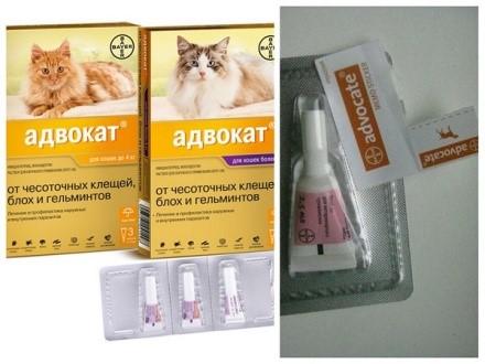 «Адвокат» для кошек - средство-инсектицид