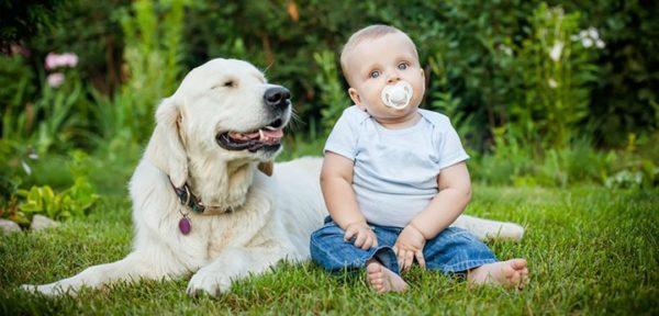 Прежде, чем посетить аллерголога, ребёнка нужно показать педиатру