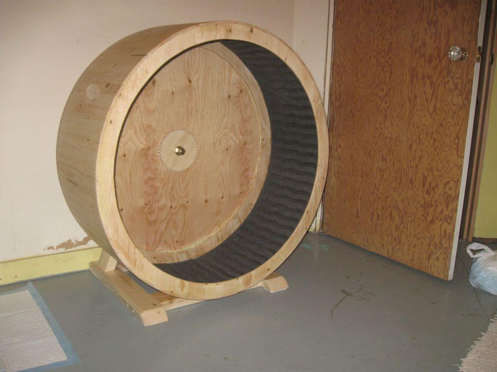 Беговое колесо из дерева