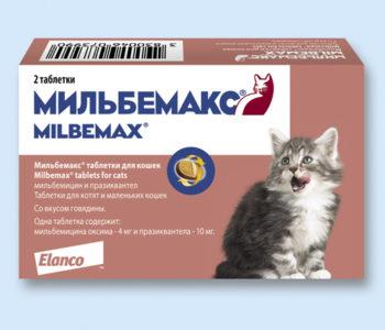 «Мибельмакс»