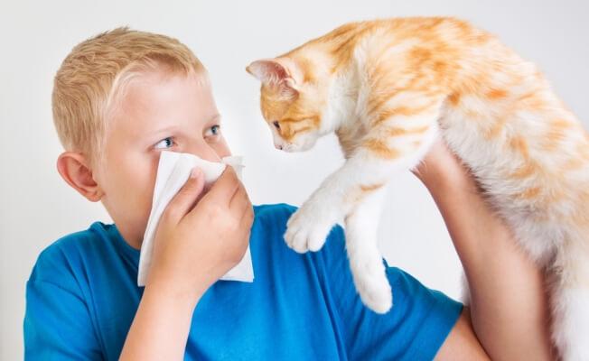 Аллергия никогда не проявляется сразу - делать поспешные выводы о ее причинах бесполезно