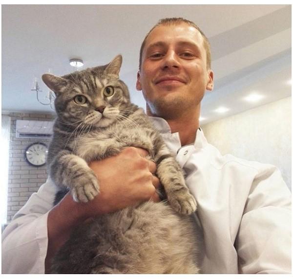 Ветеринар сможет прописать адекватную профилактику акне для вашего кота