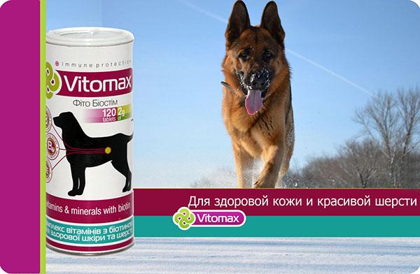 Витаминная подкормка Витамакс