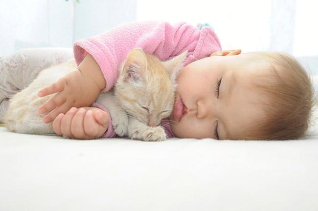 Вовремя не распознанный аллерген может вызвать у ребенка хронические заболевания в дальнейшей жизни