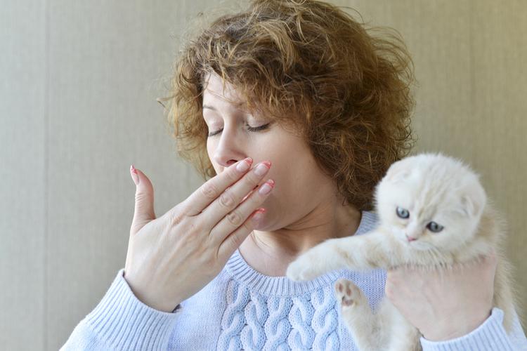 В последние годы отмечается увеличение распространенности аллергии на домашних животных