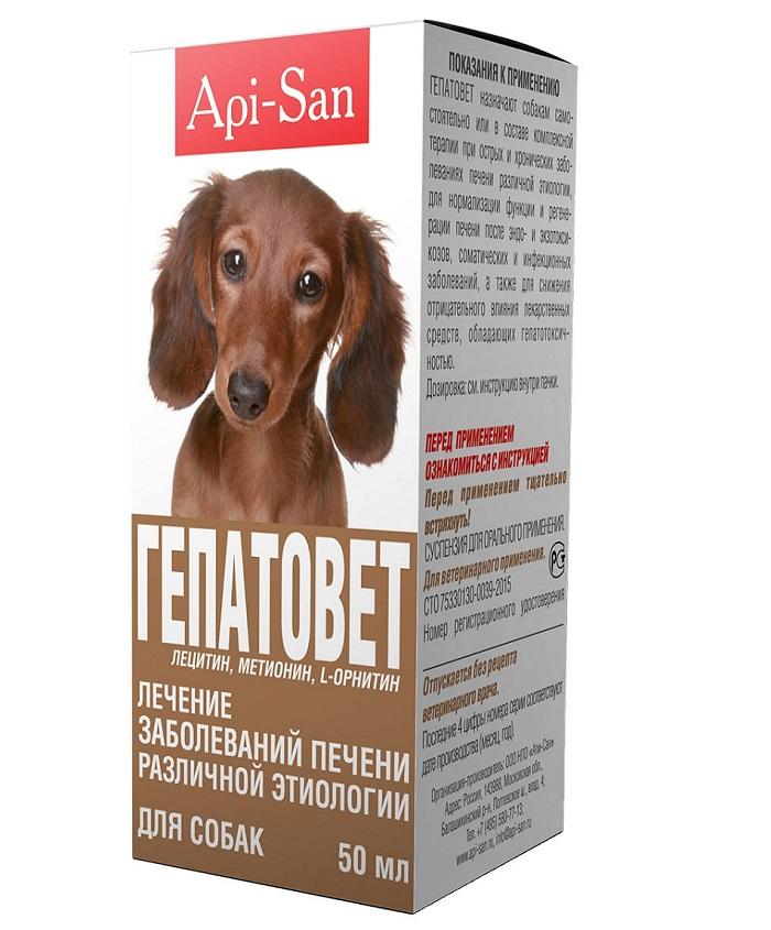 Гепатовет способствует нормализации работы печени собаки