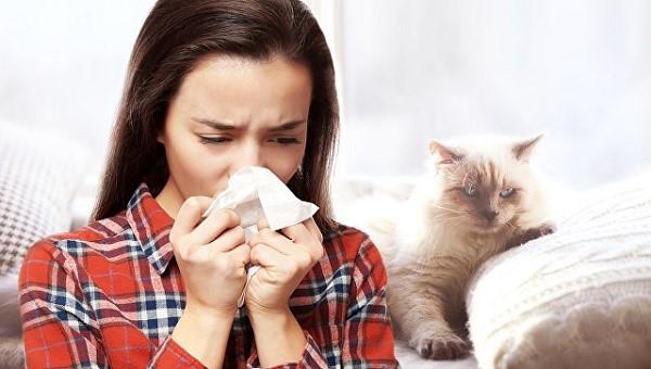 Какие методы выявления аллергии на кошек доступны сегодня?