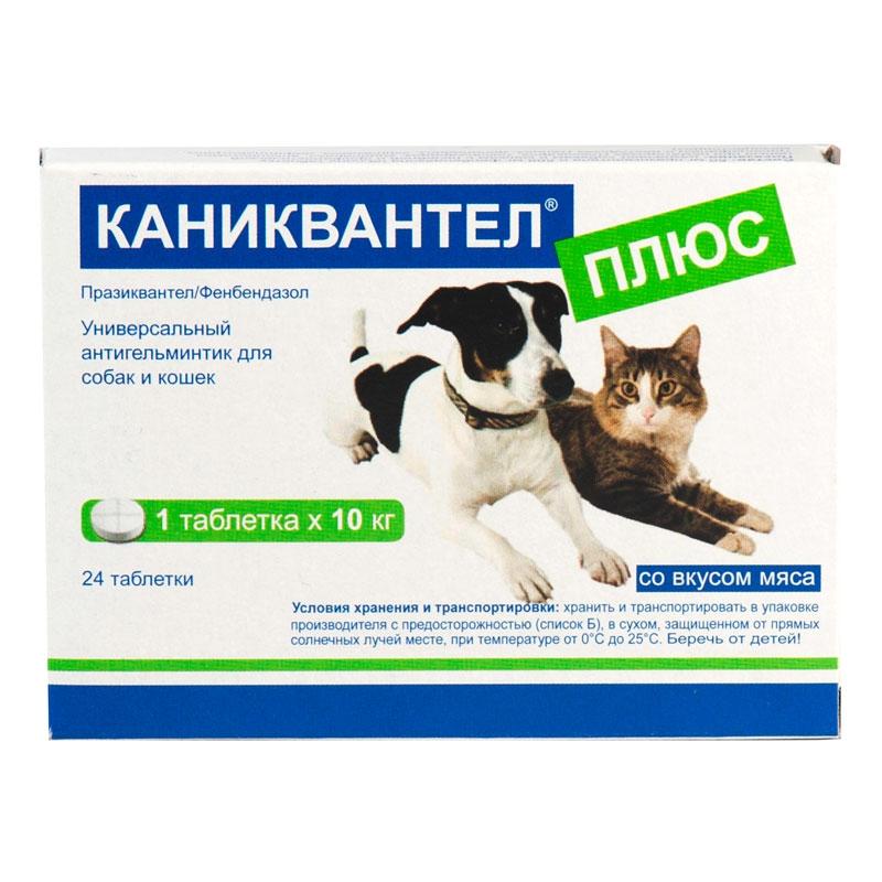 Благодаря своему запаху, Каниквантел плюс легко съедается котами