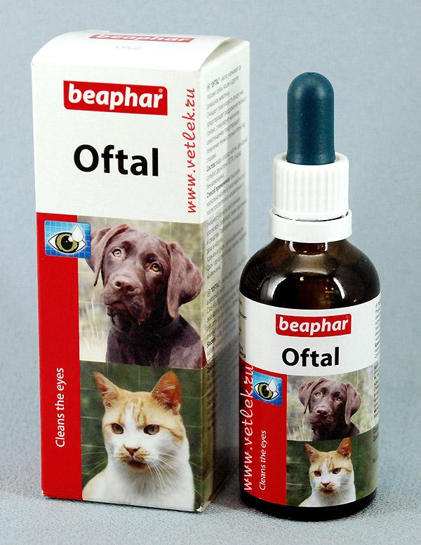 Капли Офталь для лечения и промывания глаз у котят
