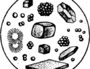 Карбонат кальция