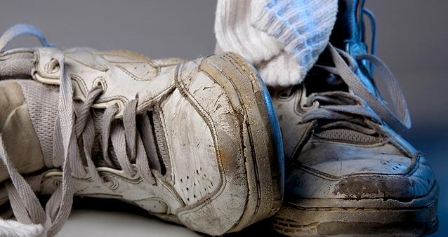 """Контакт с паразитами питомец легко может """"наладить"""" и через нечищеную уличную обувь"""