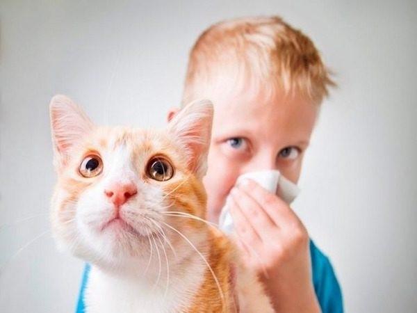 Маленьким детям проходить процедуру аллерген-специфической иммунотерапии запрещено