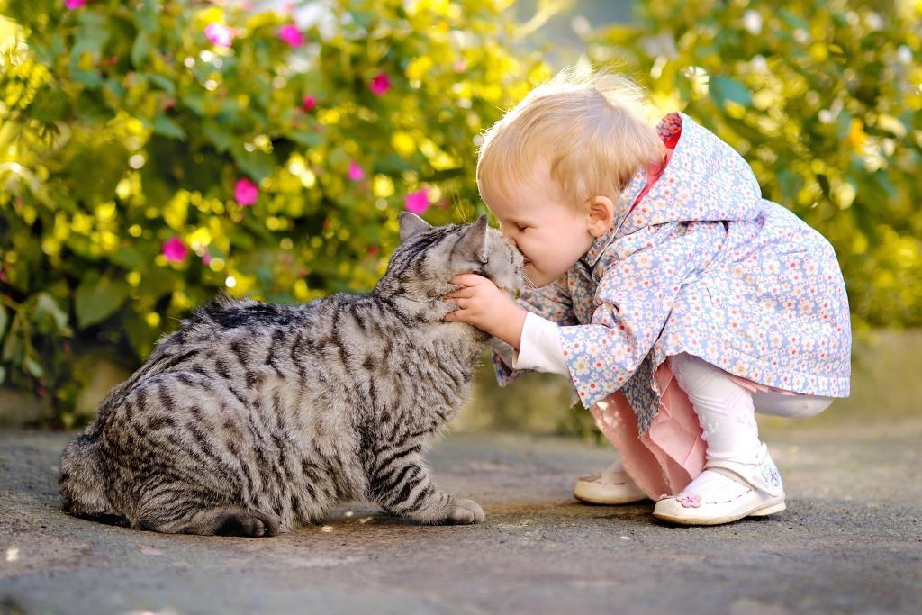 Наибольшей опасности может быть подвергнут ребенок, тесно контактирующий с животным