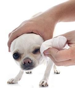 Очищение глаз при помощи салфетки