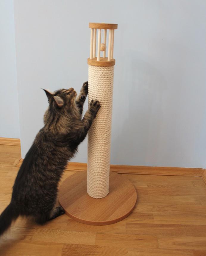 Кошка знакомится с новой когтеточкой