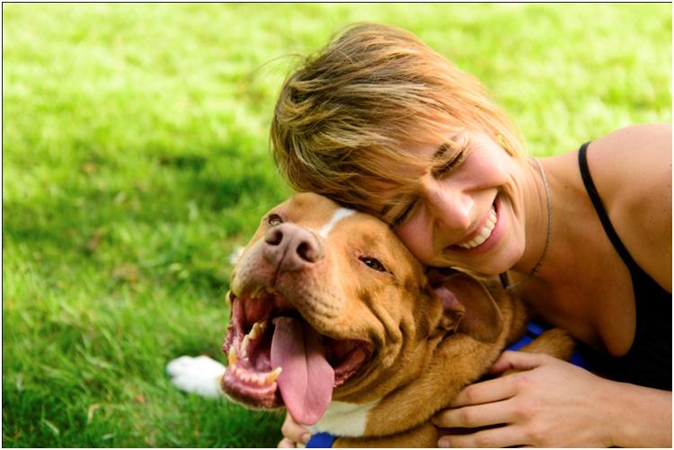 Проблема недержания мочи у собаки совершенно не опасна для человека