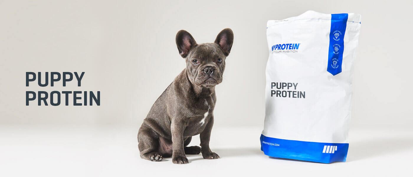 Протеин для собак