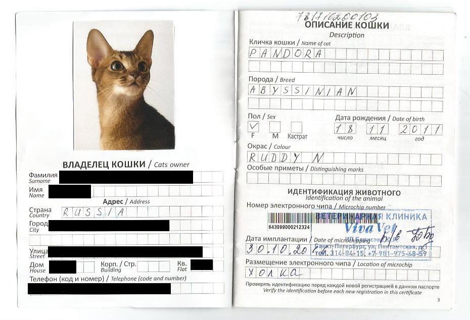 Свидетельство о чипировании кошки