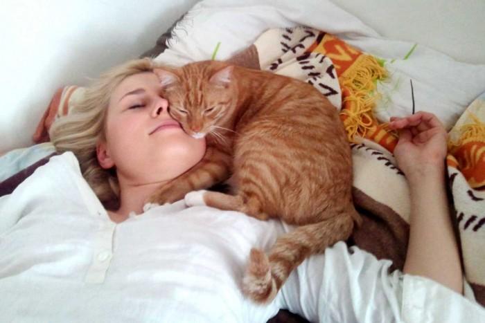 Совместные ночевки с питомцем только усиливают проявления аллергии