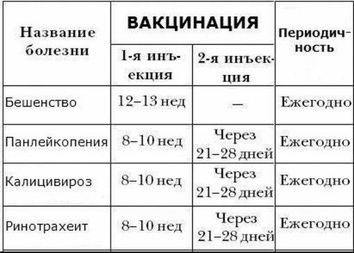 Схема вакцинаций