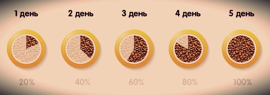 Схема смены корма для той-терьера