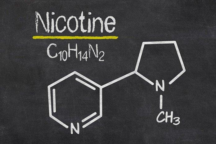 Убивая паразитов, никотин сохраняет свою опасность и для питомца при неумелом применении капель