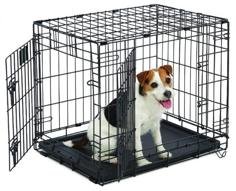 Джек-рассел терьер в в клетке для перевозк
