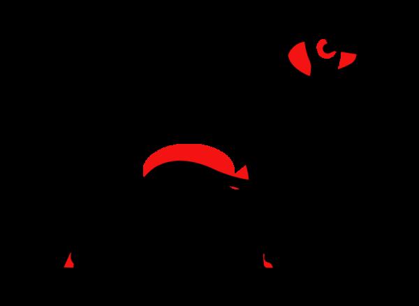 Зоны, которые первыми поражает атопический дерматит