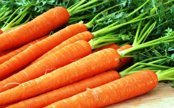 Можно покрошить им в еду яйцо и вареные овощи, особенно хорошо идут кабачки и морковь, иногда свекла