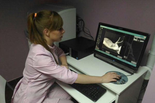 Рентгенография является дополнительным к сбору анамнеза способом диагностики
