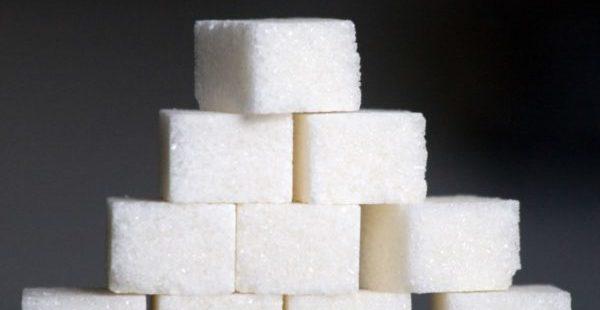 Сахарные кубики полезны при антигельминтной терапии