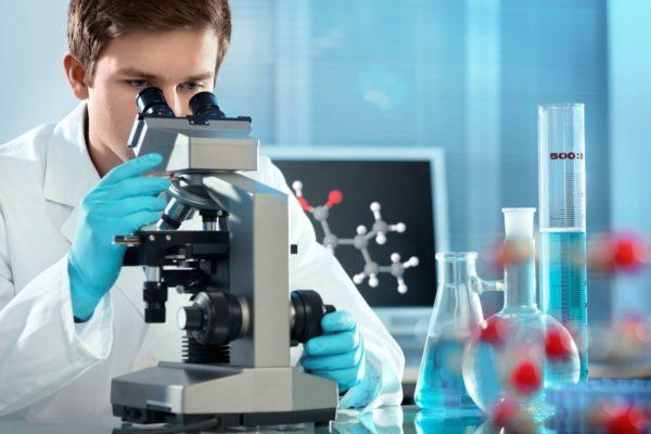 Наличие яиц диагностируется во время микроскопического исследования фекалий