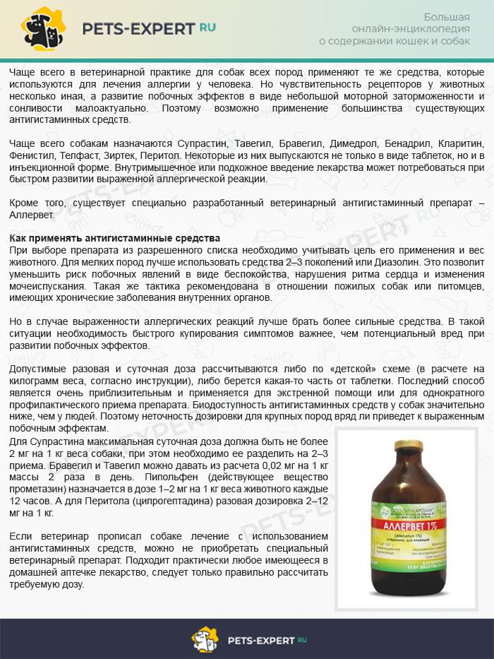 Антигистаминные препараты для собак