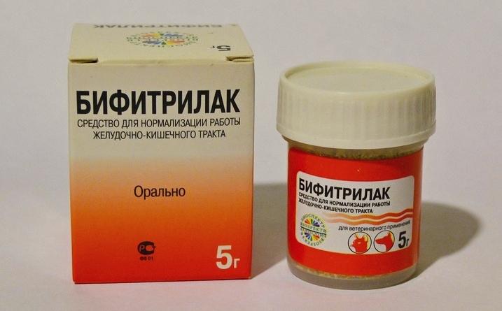 Бифитрилак и прочие пробиотики помогут кишечнику вашего питомца в работе