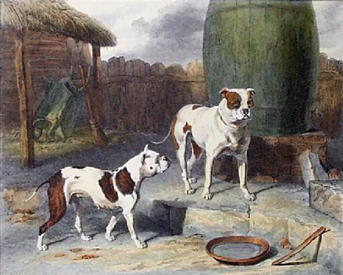 Бульдоги, 1814 год