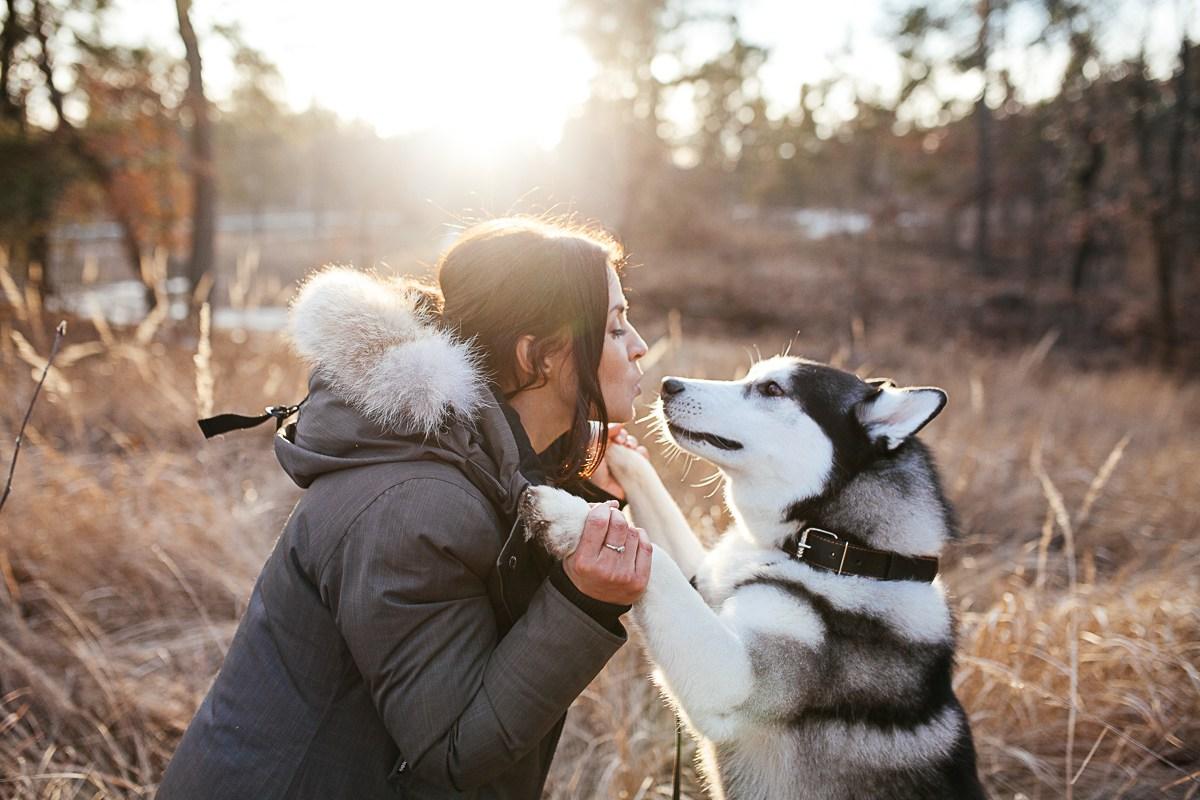 Важен хороший контакт между хозяином и его собакой
