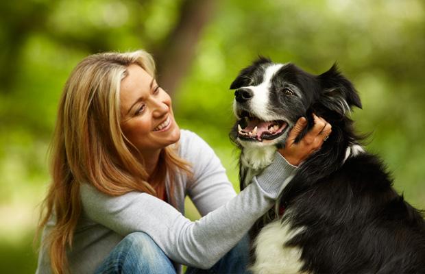 Вакцина «Эурикан» имеет положительные отзывы владельцев животных