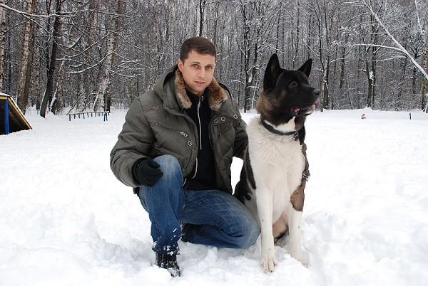 Владельцам псов данной породы нужно следовать определенным поведенческим правилам