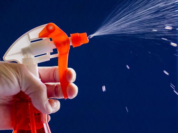 Вода из пульверизатора поможет скорректировать поведение