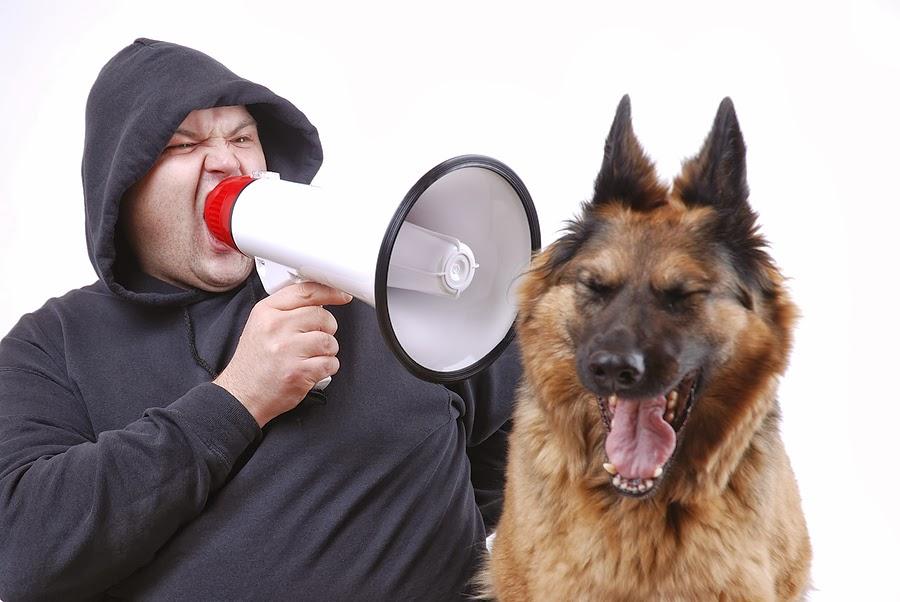 Воспитание собаки - это долгий и упорный труд