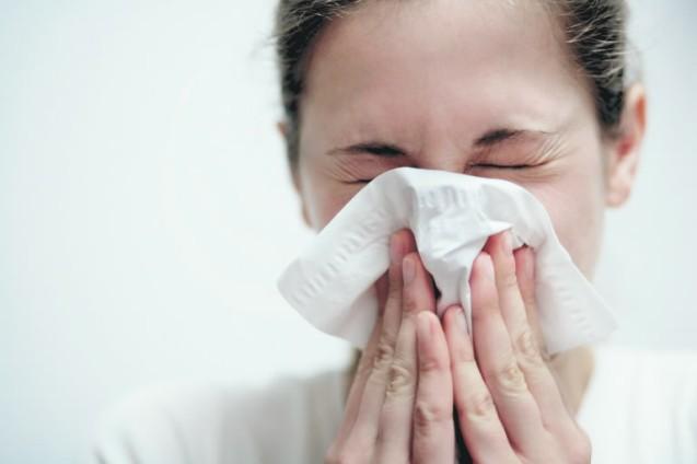 В некоторых случаях первые приступы могут настигнуть аллергика через месяцы после покупки щенка