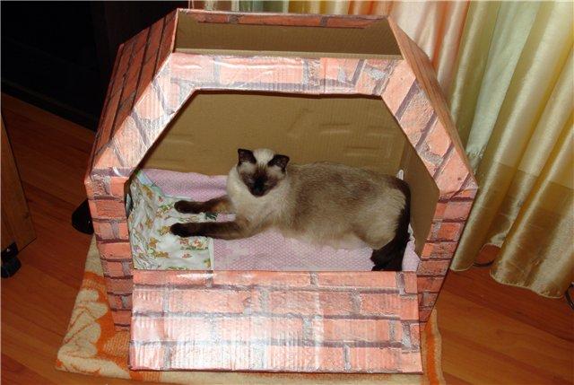 Домик для беременной кошки можно сделать из любой подходящей коробки