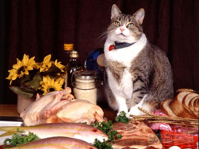 Иногда и изобилие полезной пищи может вызывать различные недомогания