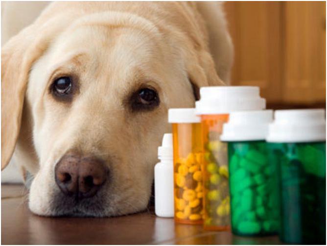 Использовать препараты нужно строго по рекомендации врача