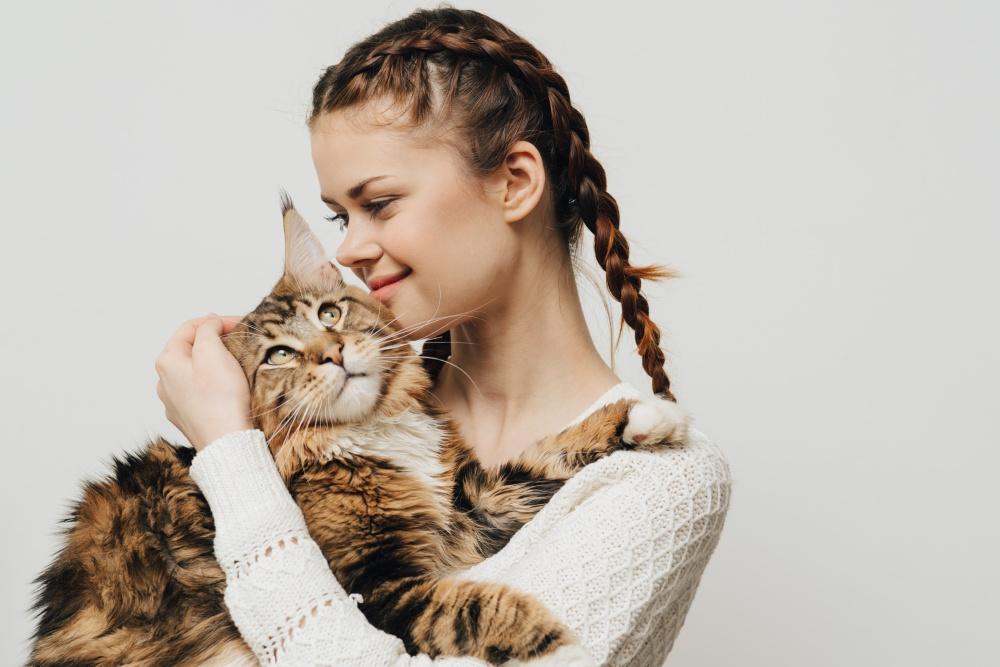 Как понять, что кот заболел?