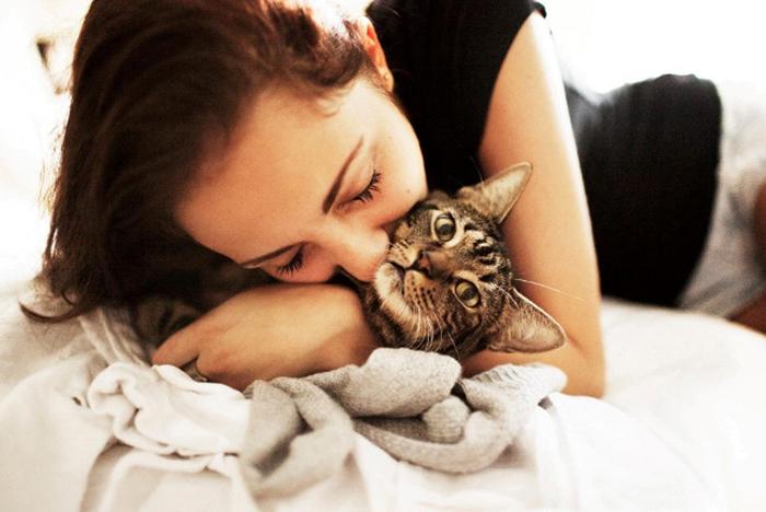Кошка символизирует домашний уют, счастье и спокойствие