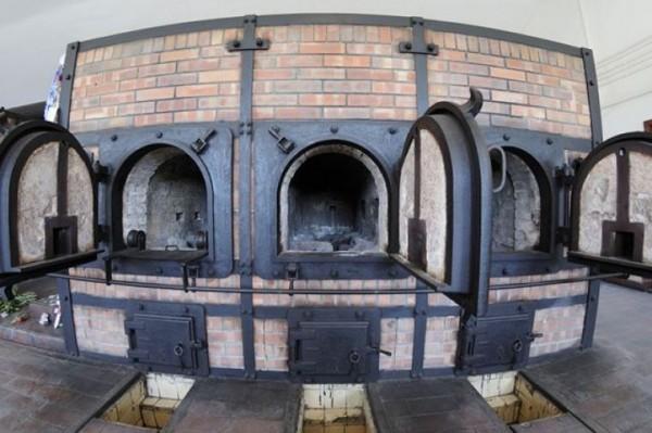 Кремация предполагает сжигание тела мертвого животного в специальных печах