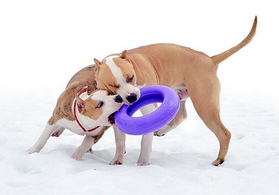 Крупный вариант пуллера для собак